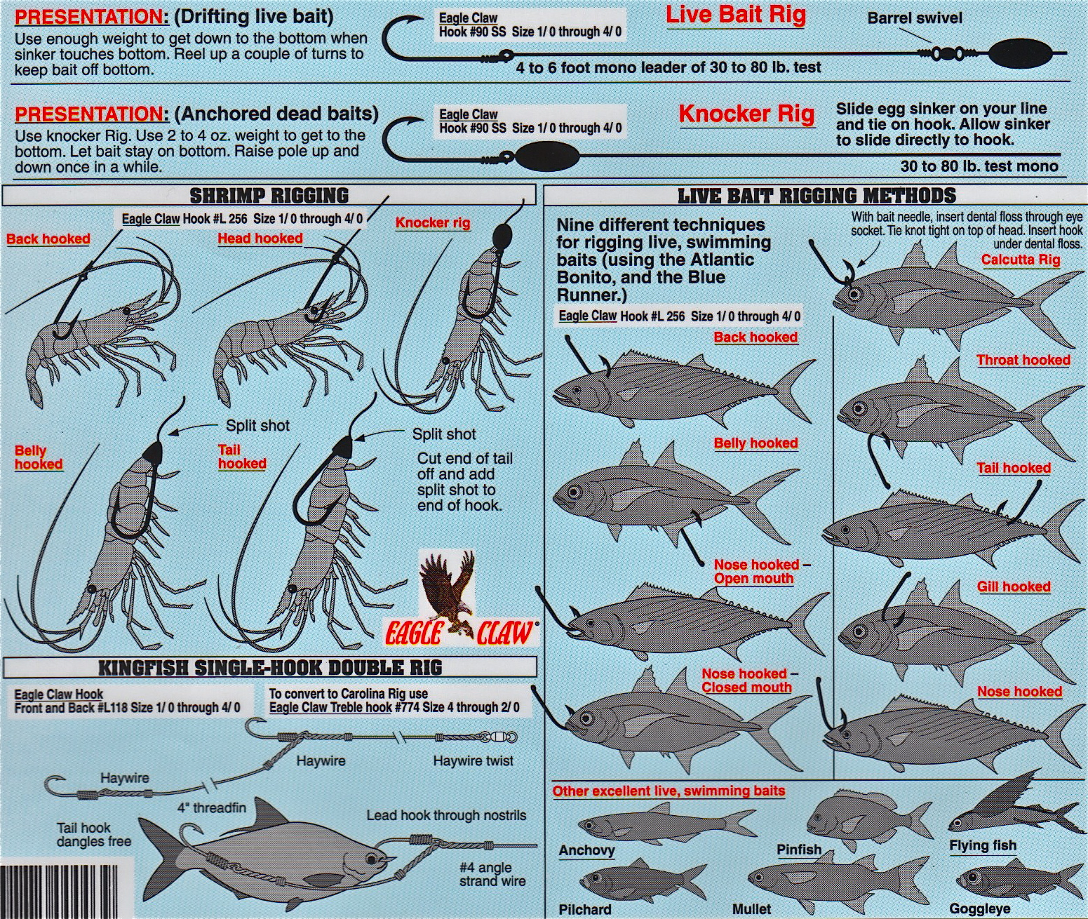 How to hook all types of baitfish